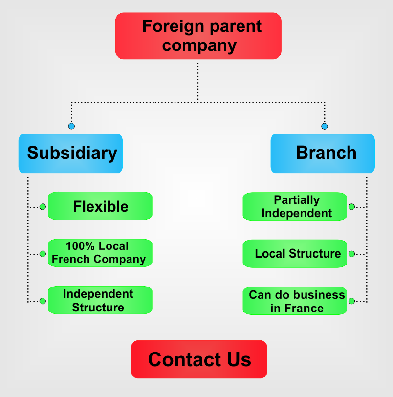 Subsidiary-vs-branch-in-France.png